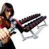 Упражнения с гантелями для груди: особенности тренировок