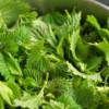 Чем полезны листья крапивы для волос?