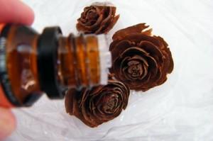 Кедровое масло в косметологии